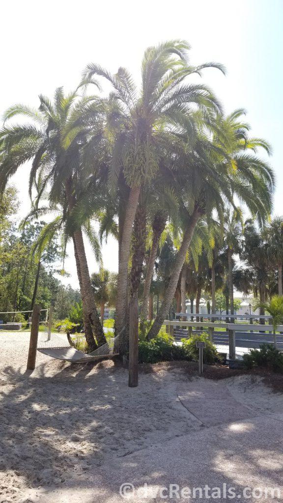 Family tree at Disney's Old Key West