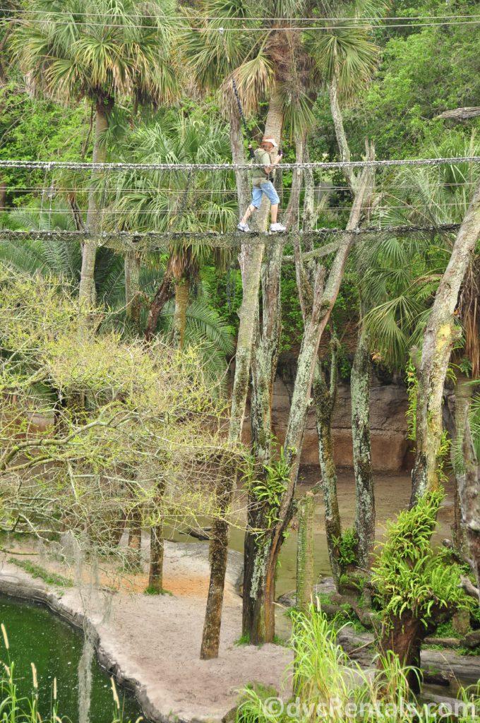 Marilyn crossing the rope bridge at the Wild Africa Trek