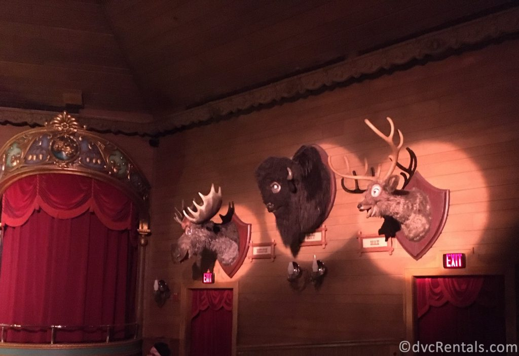 Country Bear Jamboree at the Magic Kingdom