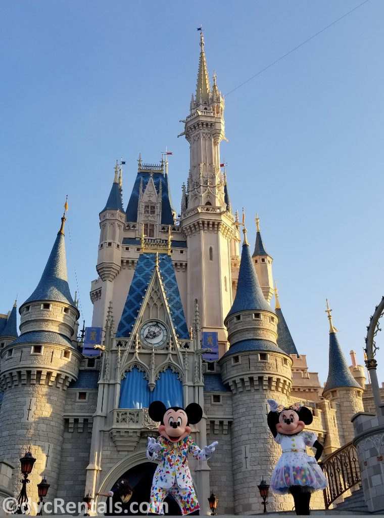 Mickey and Minnie Mouse at Cinderella Castle in the Magic Kingdom