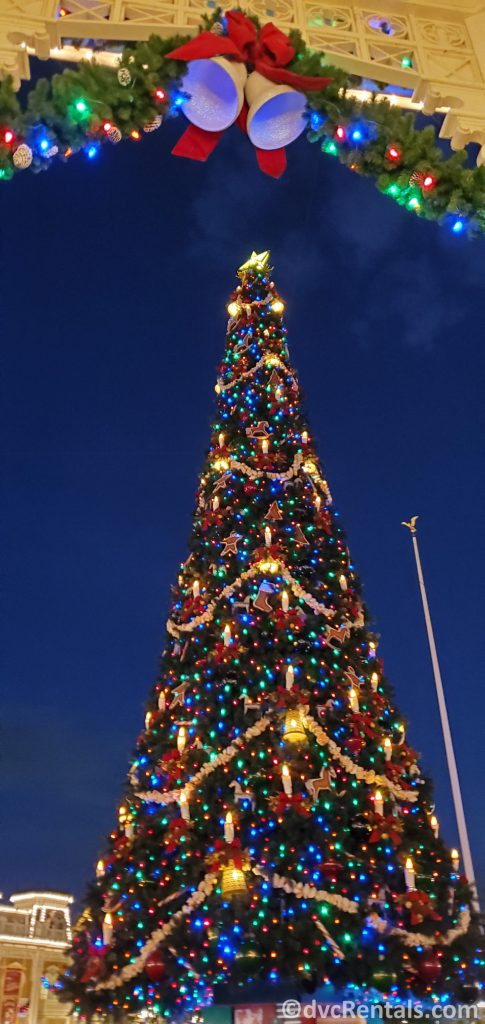 Christmas tree at Disney's Magic Kingdom