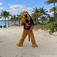Pluto at Castaway Cay