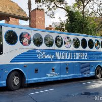 Disney's Magical Express at Disney's Animal Kingdom Villas