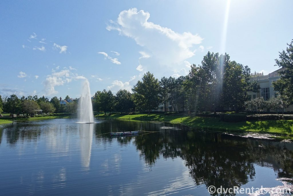 Springs at Disney's Saratoga Springs Resort & Spa