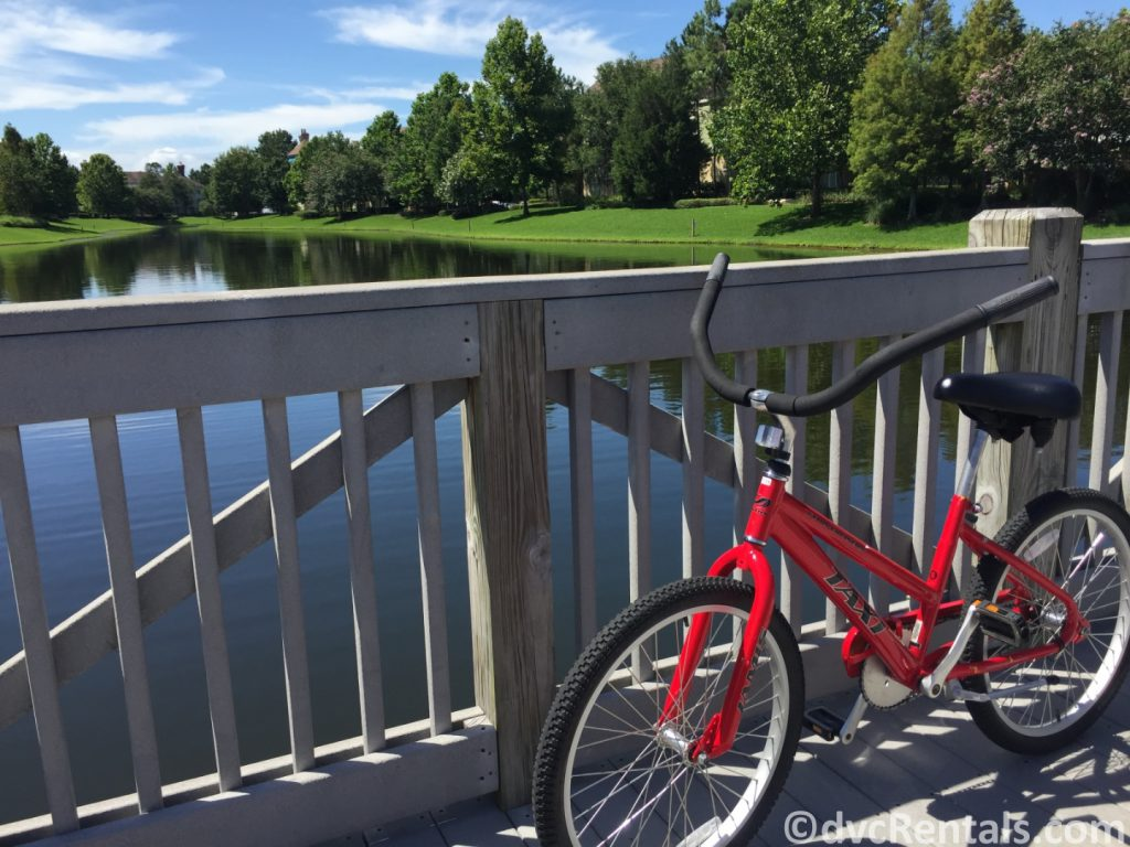 bike with Disney Springs in the background