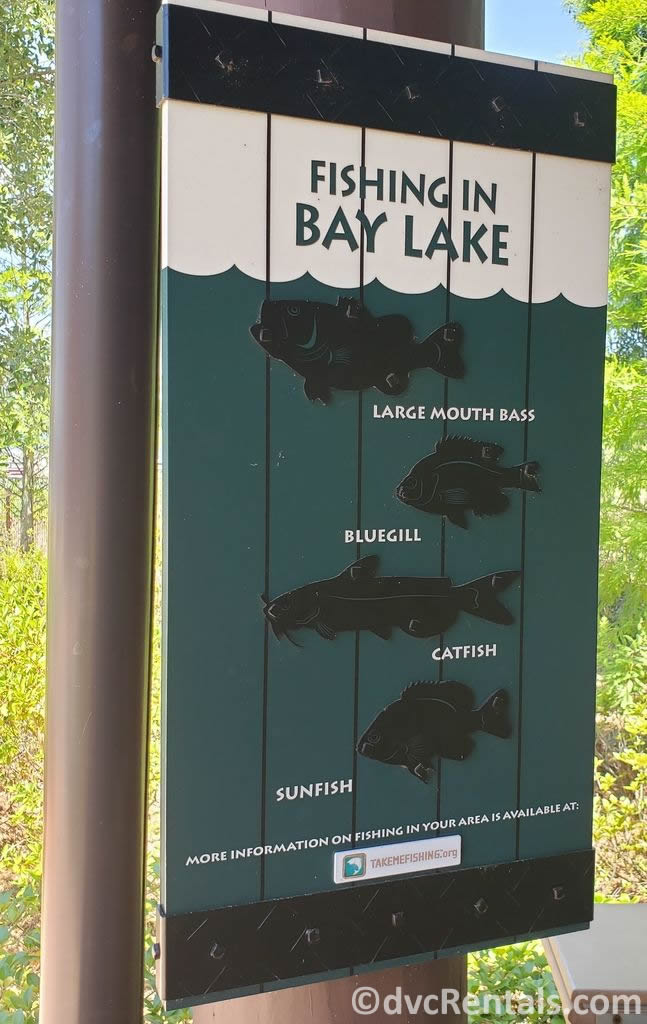 Fishing Sign from Disney's Bay Lake Tower