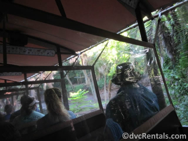 Kilimanjaro Safari with clear shields installed between the rows