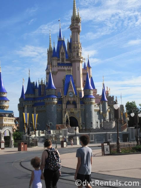 guests social distancing in front of Cinderella Castle