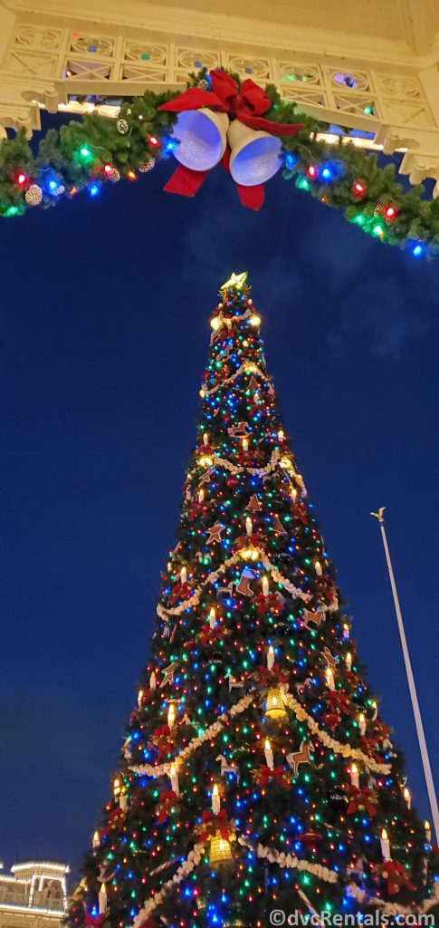 Christmas Tree at the Magic Kingdom