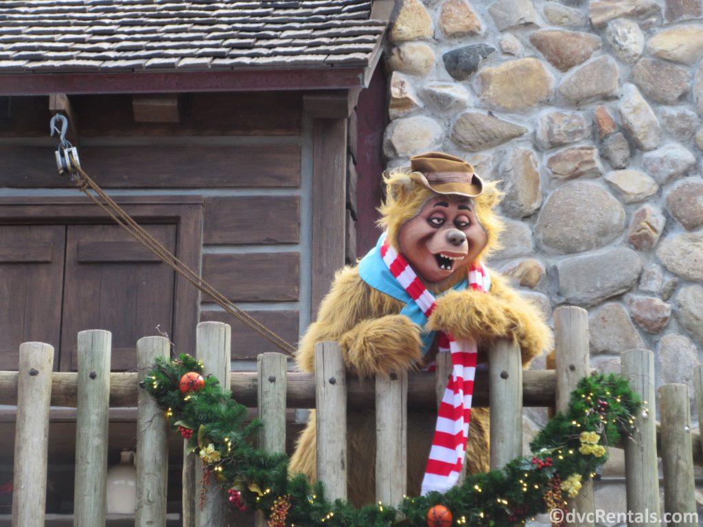 Country Bear at the Magic Kingdom