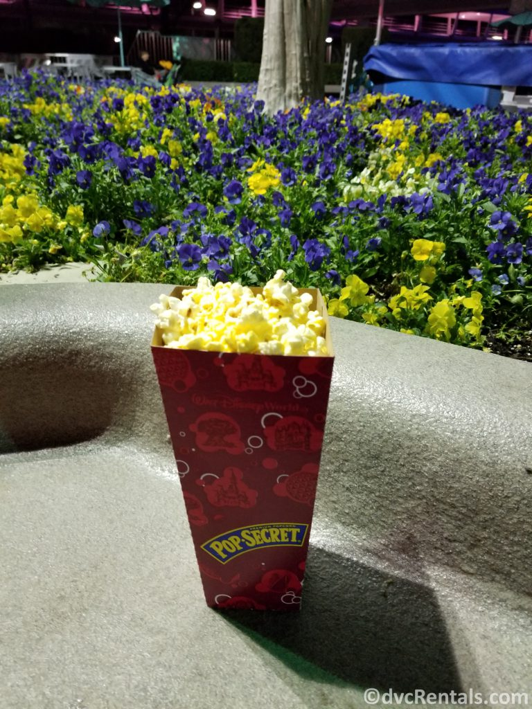 Popcorn at Walt Disney world