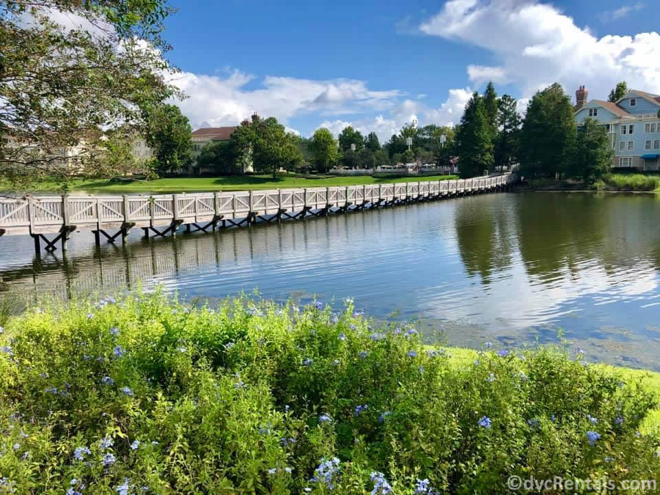 walking bridge at Disney's Saratoga Springs Resort & Spa