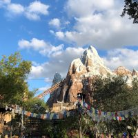 Expedition Everest at Animal Kingdom