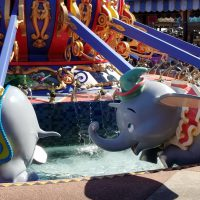 Dumbo ride at the Magic Kingdom