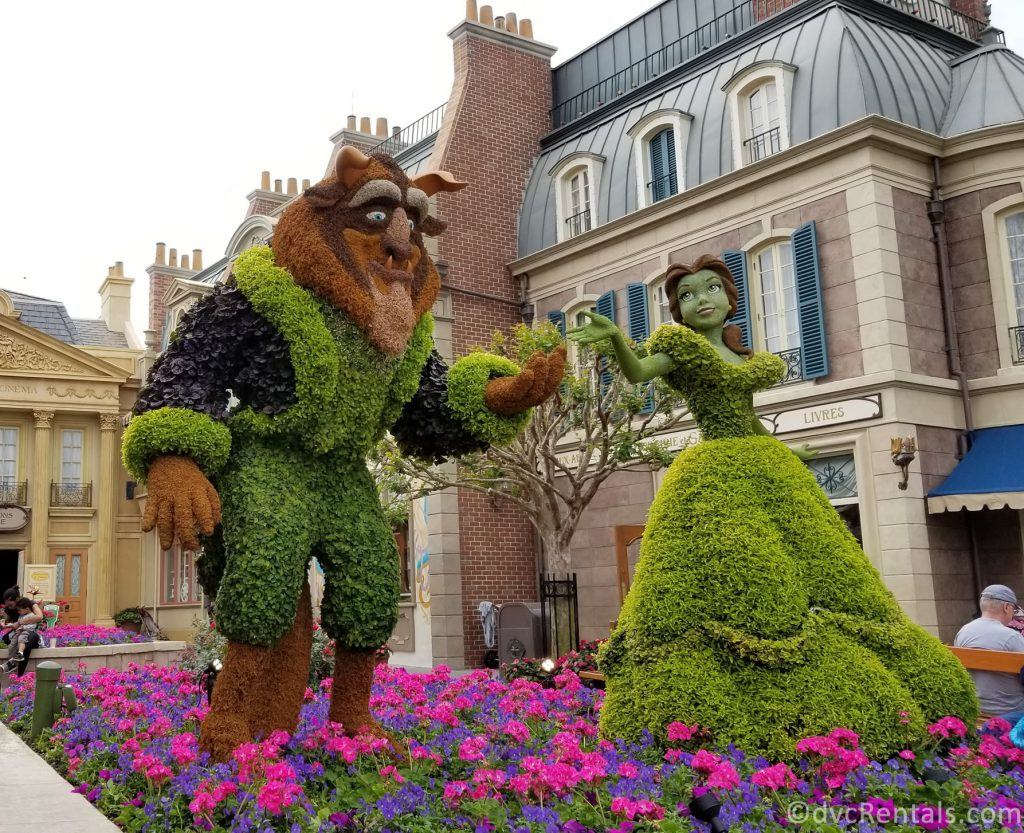 Beauty and the Beast topiary in the France pavilion at Epcot