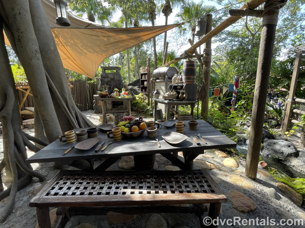 Kitchen area at the Swiss Family Treehouse
