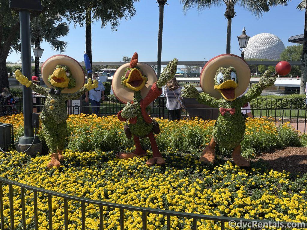 The Three Caballeros topiary