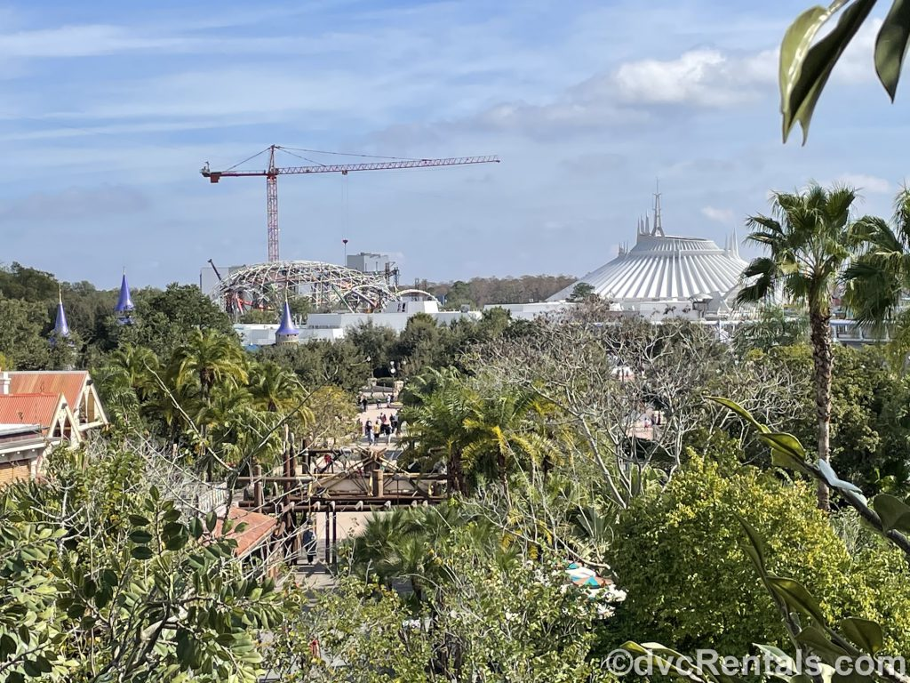 Views form the top of the Swiss Family Treehouse