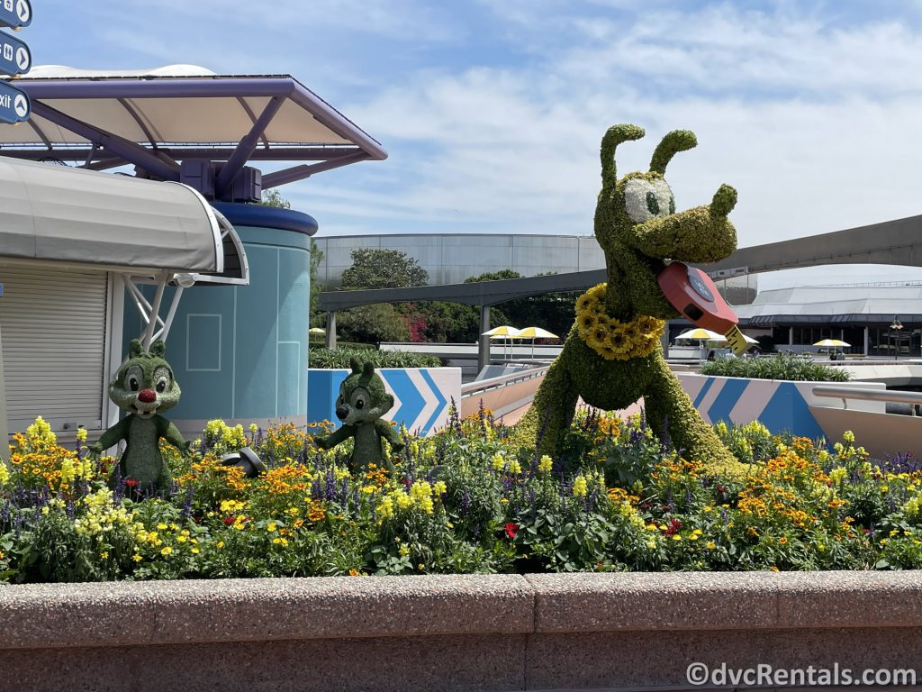 Pluto topiary from the Taste of Epcot International Flower & Garden Festival
