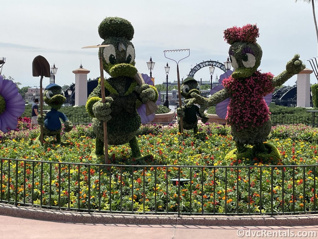 Donald and Daisy topiaries from the Taste of Epcot International Flower & Garden Festival