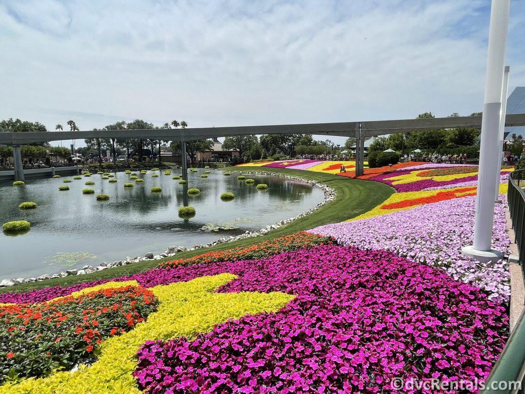 Flower beds from the Taste of Epcot International Flower & Garden Festival