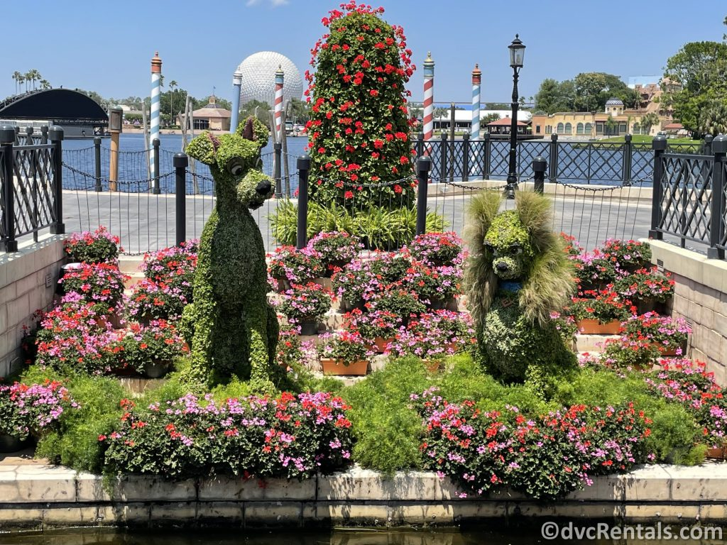 Lady and the Tramp topiaries at the Taste of Epcot International Flower & Garden Festival