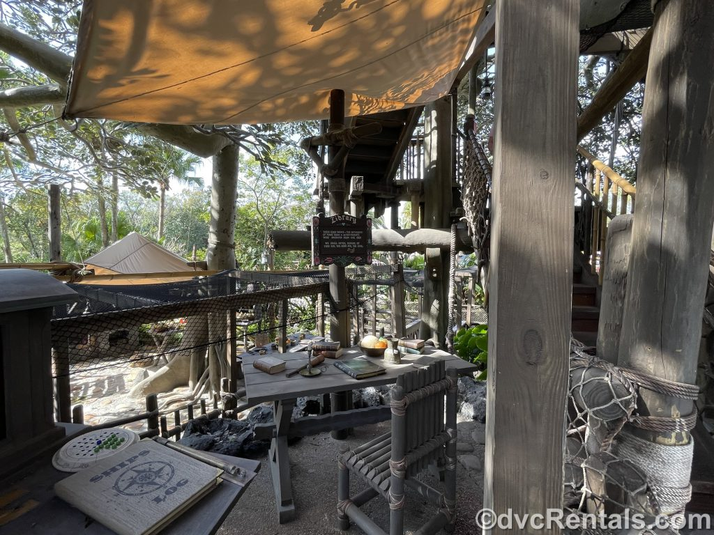 Library in the Swiss Family Treehouse