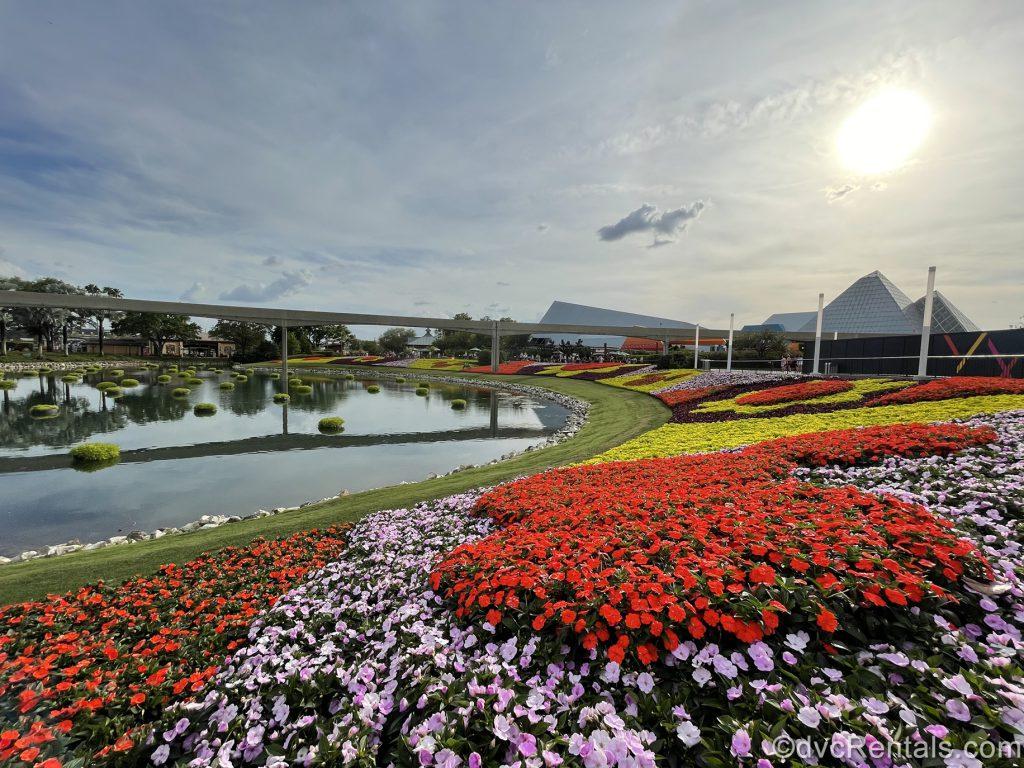 Flower Beds from the 2020 Taste of Epcot International Flower & Garden Festival