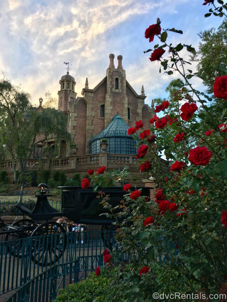 Haunted Mansion at the Magic Kingdom